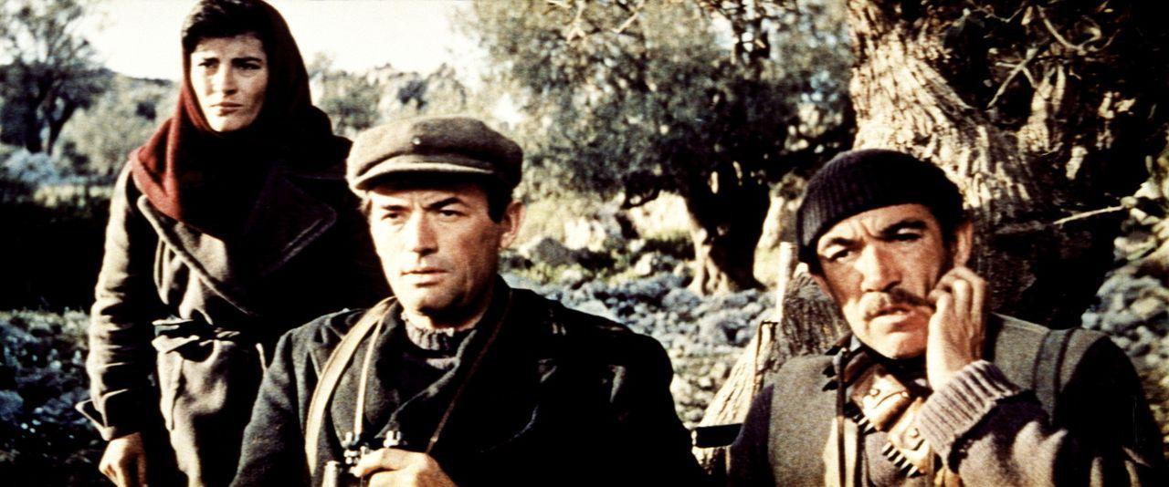 Getarnt schleichen Maria (Irene Papas, l.), Mallory (Gregory Peck, M.) und Andrea (Anthony Quinn, r.) über die Insel, um die Kanone von Navarone zu...