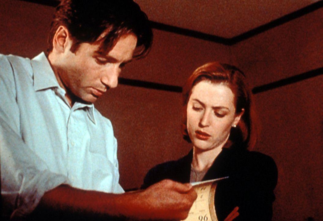Mulder (David Duchovny, l.) und Scully (Gillian Anderson, r.) beschäftigen sich mit einer Mordserie, bei der Ärzte einer Schönheitsklinik in einem A... - Bildquelle: TM +   Twentieth Century Fox Film Corporation. All Rights Reserved.