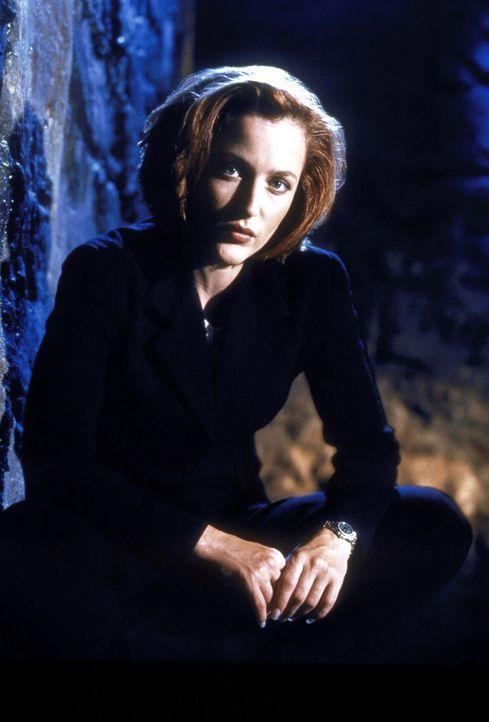 (7. Staffel) - FBI-Agentin Dana Scully (Gillian Anderson) gerät mehr und mehr in den Sog von Vorgängen, die auf natürliche Weise nicht erklärbar sin... - Bildquelle: TM +   2000 Twentieth Century Fox Film Corporation. All Rights Reserved.