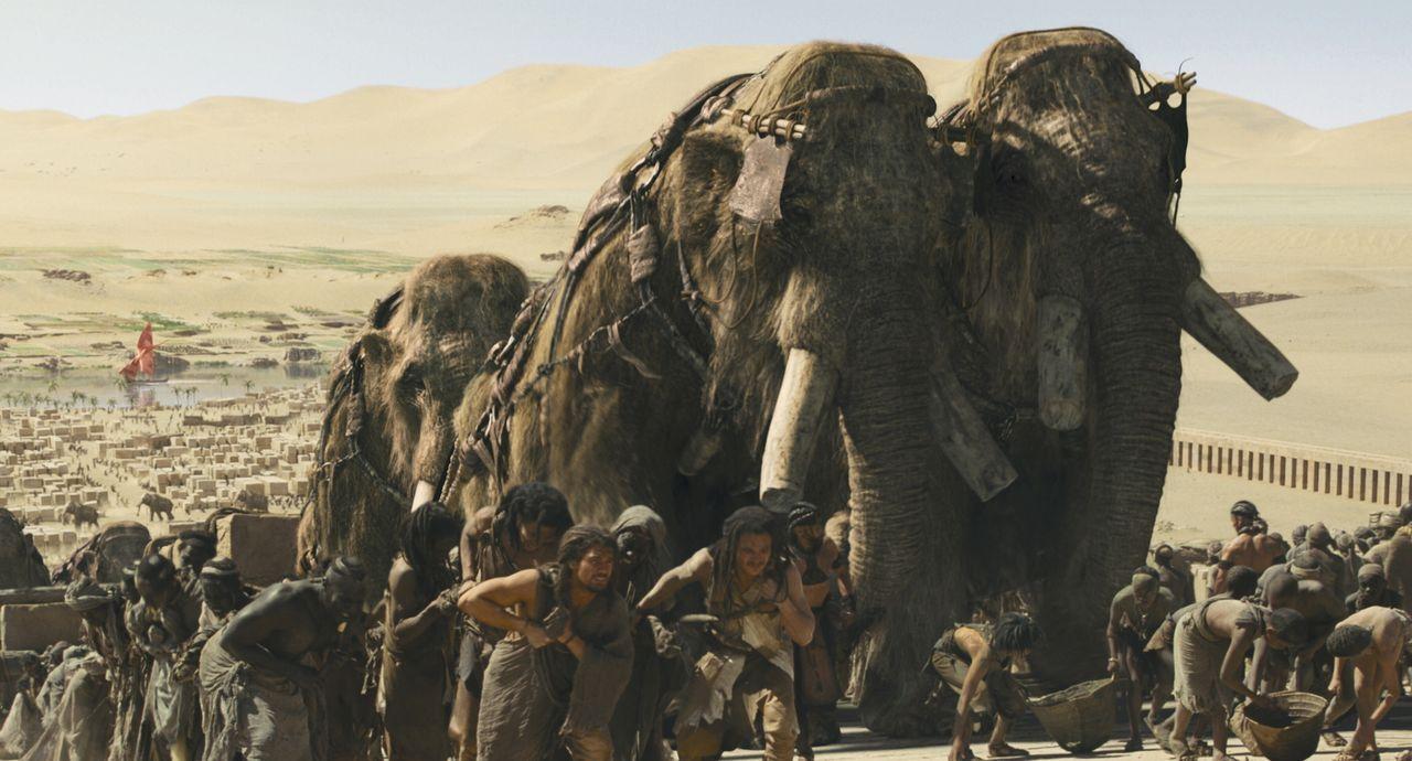Durch das Töten eines riesigen Mammuts kommt der Jäger D'Leh (Steven Strait, M.l.) seinem größten Wunsch einen Schritt näher: Er will die attraktive... - Bildquelle: Warner Brothers