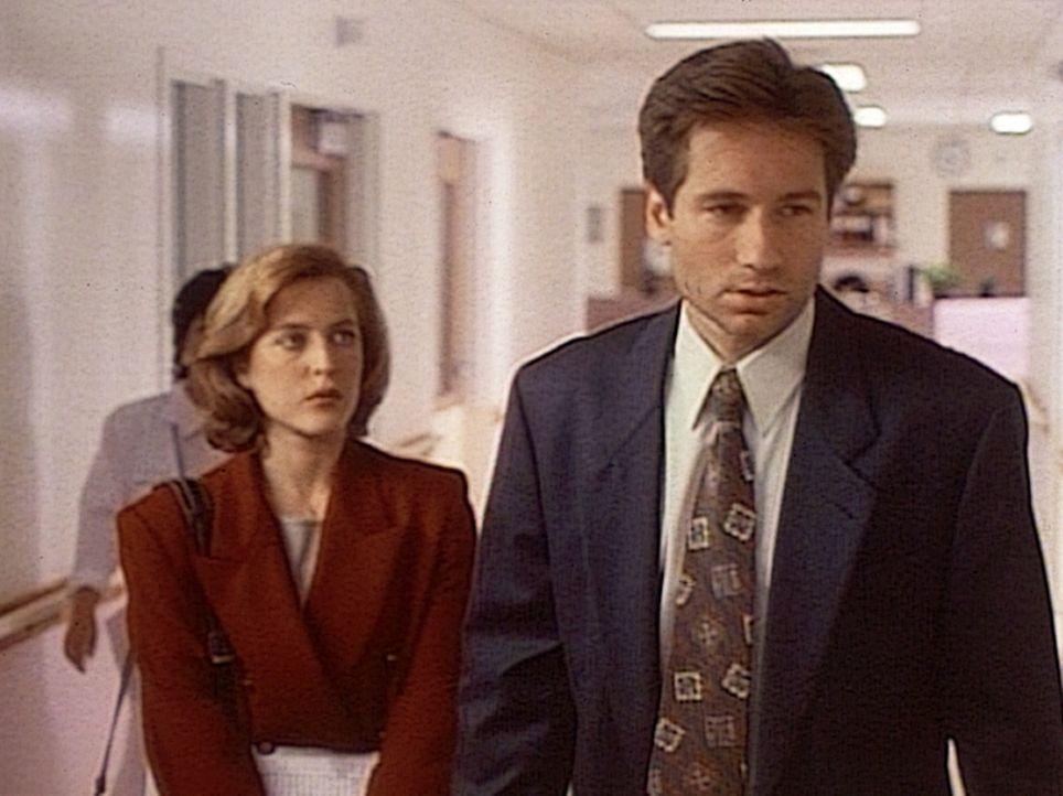 Die FBI-Agenten Scully (Gillian Anderson, l.) und Mulder (David Duchovny, r.) finden Hinweise, dass Außerirdische bei der Entführung eines jungen Mä... - Bildquelle: TM +   Twentieth Century Fox Film Corporation. All Rights Reserved.