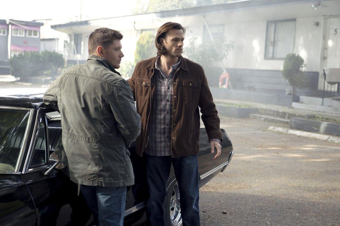 Ahnen nicht, dass sie nur Figuren in Metatrons Spiel sind: Dean (Jensen Ackles, l.) und Sam (Jared Padalecki, r.) ... - Bildquelle: 2013 Warner Brothers