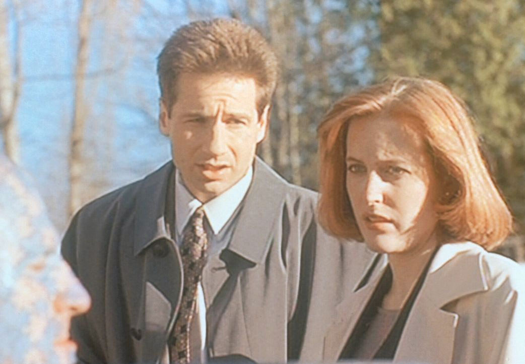 Mulder (David Duchovny, M.) und Scully (Gillian Anderson, r.) staunen nicht schlecht, als sie bei den Ermittlungen auf den Rästelmann (The Enigma, v... - Bildquelle: TM +   2000 Twentieth Century Fox Film Corporation. All Rights Reserved.