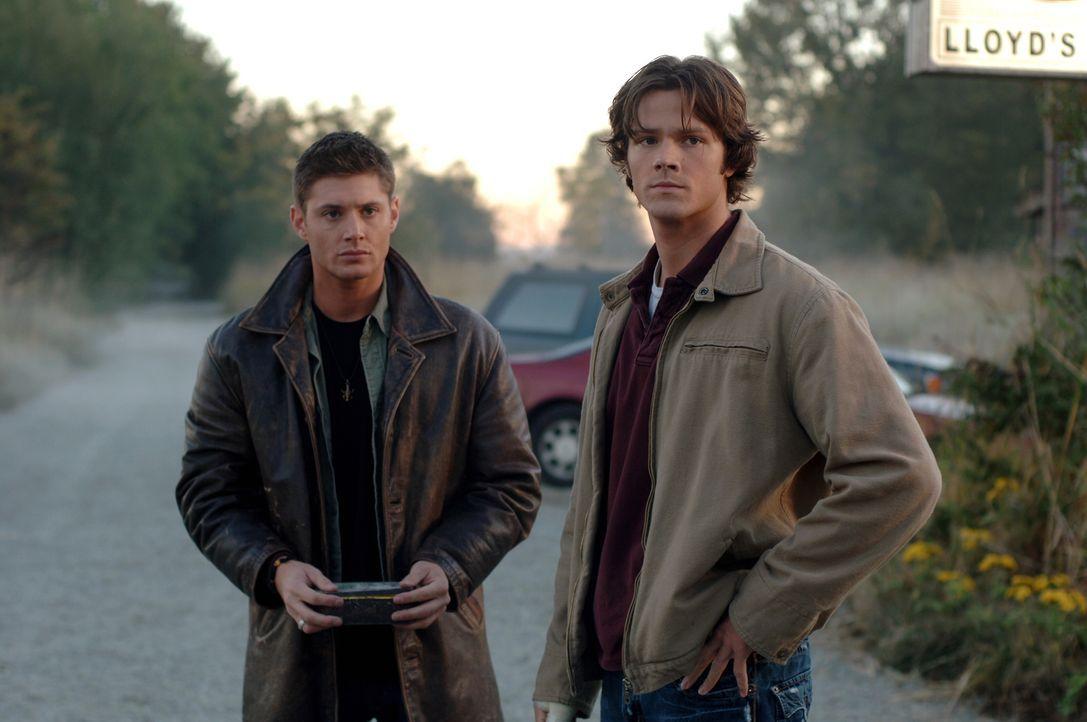 Der Fall wird immer mysteriöser: Sam (Jared Padalecki, r.) und Dean (Jensen Ackles, l.) glauben, dass ein Dämon in Form eines schwarzen Höllenhundes... - Bildquelle: Warner Bros. Television