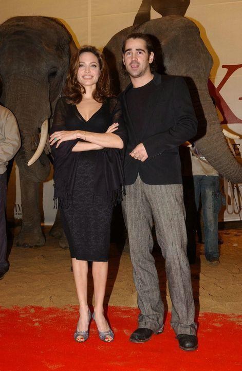 """Angelina Jolie (l.) und Colin Farrell (r.) bei der Premiere zu """"Alexander"""". - Bildquelle: Constantin Film"""