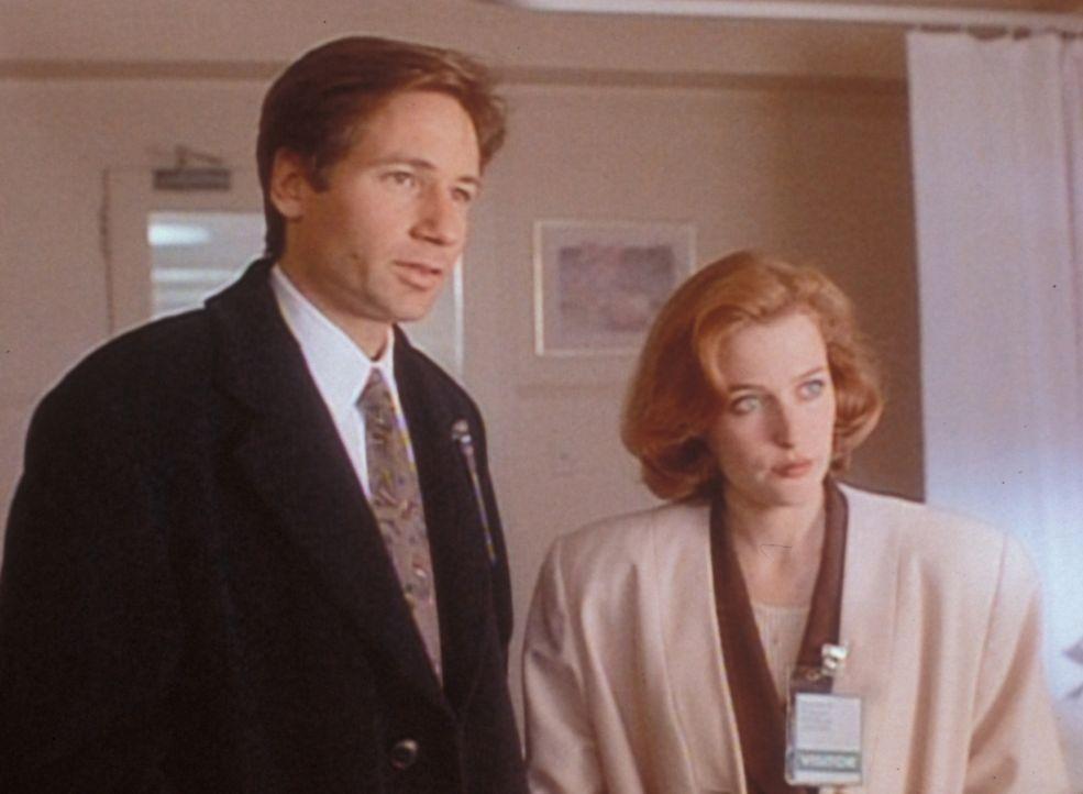 Mulder (David Duchovny, l.) und Scully (Gillian Anderson, r.) stellen fest, dass ein ehemaliges Entführungsopfer wenig Bereitschaft zeigt, ihnen bei... - Bildquelle: TM +   Twentieth Century Fox Film Corporation. All Rights Reserved.