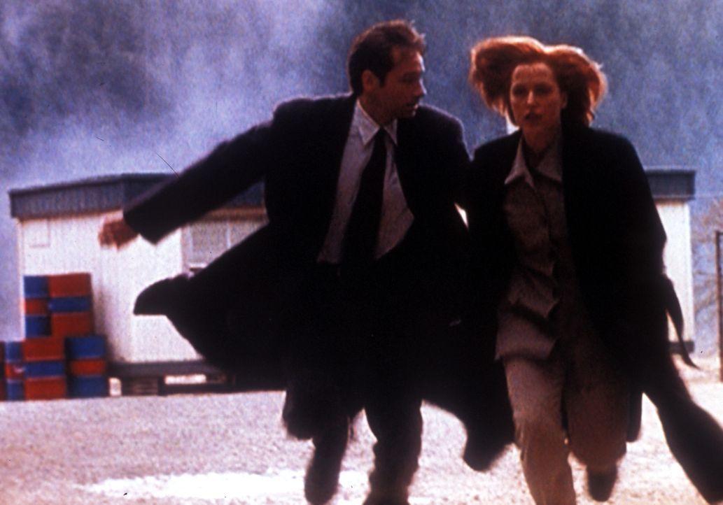 Mulder (David Duchovny, l.) und Scully (Gillian Anderson, r.) flüchten, als der Anführer einer Paramilitärischen Einheit, den sie verhaften wollten,... - Bildquelle: TM +   2000 Twentieth Century Fox Film Corporation. All Rights Reserved.