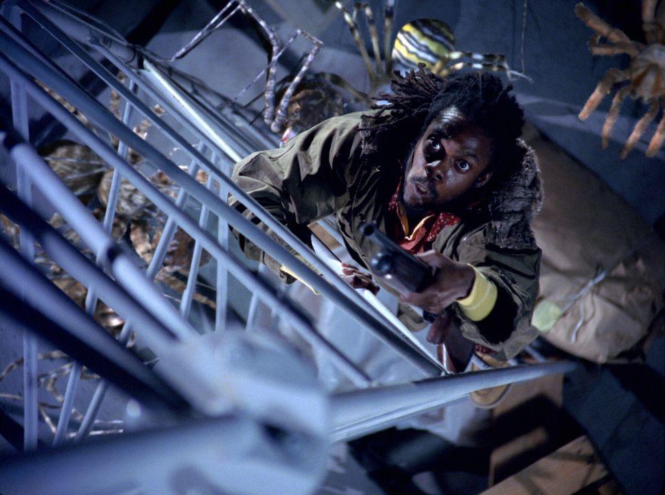 Auf der Flucht vor den Riesenspinnen: Harlan (Doug E. Doug) - Bildquelle: Warner Bros. Pictures