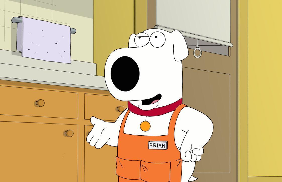 Die Familienkrankenversicherung hat neuerdings Hunde aus ihren Leistungen gestrichen - jetzt muss Brian wohl arbeiten gehen ... - Bildquelle: 2016-2017 Fox and its related entities. All rights reserved.