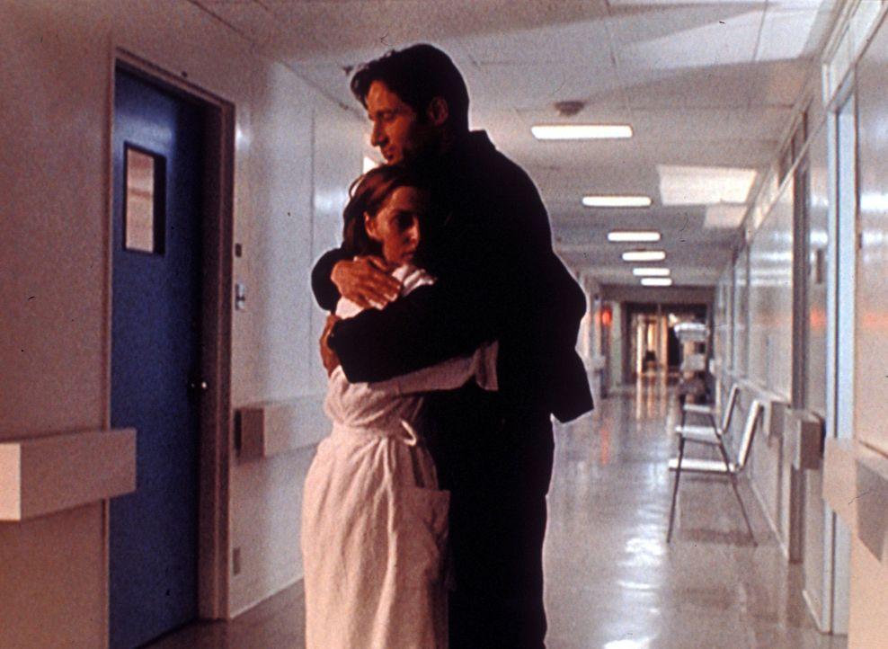 Scully (Gillian Anderson, l.) hat einen bösartigen Gehirntumor. Sie entschließt sich trotzdem, mit Mulder (David Duchovny, r.) weiterzuarbeiten. - Bildquelle: TM +   Twentieth Century Fox Film Corporation. All Rights Reserved.