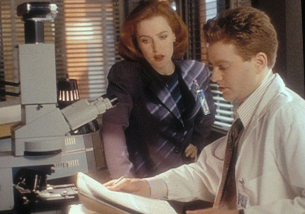 Der FBI-Wissenschaftler Pendrell (Brendan Beiser, r.) erklärt Scully (Gillian Anderson, l.), dass der Mann, der auf Skinner geschossen hat, auch ihr... - Bildquelle: TM +   2000 Twentieth Century Fox Film Corporation. All Rights Reserved.