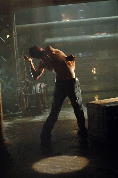 Der Formwandler hat die Gestalt von Dean (Jensen Ackles) angenommen, was für alle Beteiligten zu einer Odyssee wird ... - Bildquelle: Warner Bros. Television