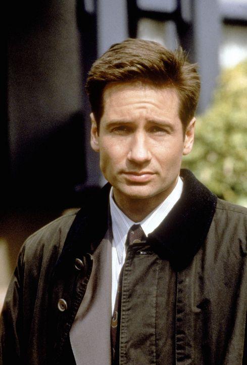 (2. Staffel) - FBI-Agent Fox Mulder (David Duchovny) befasst sich mit der Aufklärung längst abgelehnter Fälle, was seinen Vorgesetzten gar nicht rec... - Bildquelle: TM +   Twentieth Century Fox Film Corporation. All Rights Reserved.