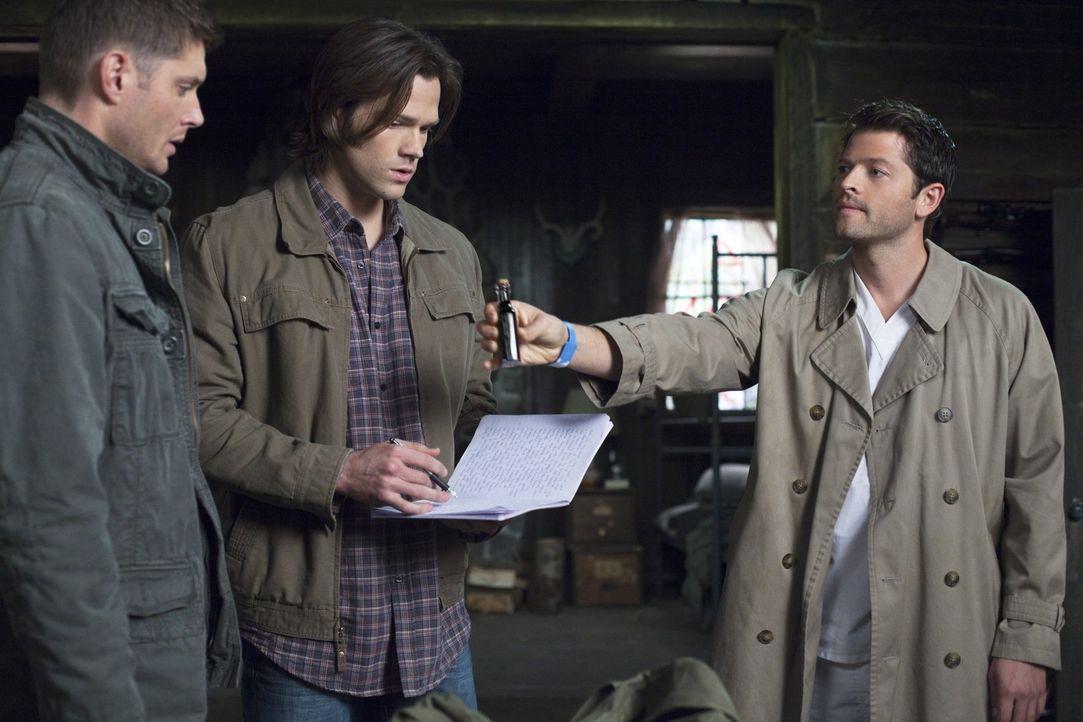 Die beiden Brüder Sam (Jared Padalecki, M.) und Dean Winchester (Jensen Ackles, l.) haben Unterstützung von einem ehemaligen Engel. Castiel (Misha C... - Bildquelle: Warner Bros. Television