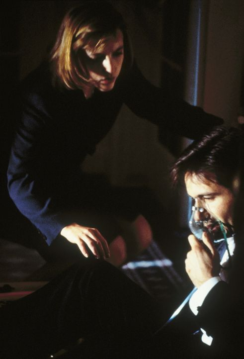 Gerade nocht rechtzeitig konnte sich Mulder (David Duchovny, r.) aus einem brennenden Haus befreien. Seine Kollegin Scully (Gillian Anderson, l.) le... - Bildquelle: TM +   Twentieth Century Fox Film Corporation. All Rights Reserved.