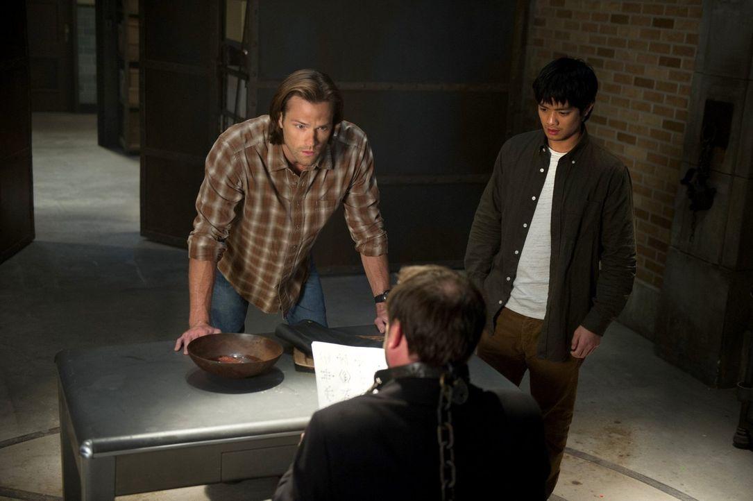 Sam (Jared Padalecki, l.) und Kevin (Osric Chau, r.) sind bei der Entzifferung der Tafel auf Crowleys (Mark Sheppard, M.) Hilfe angewiesen, doch die... - Bildquelle: 2013 Warner Brothers