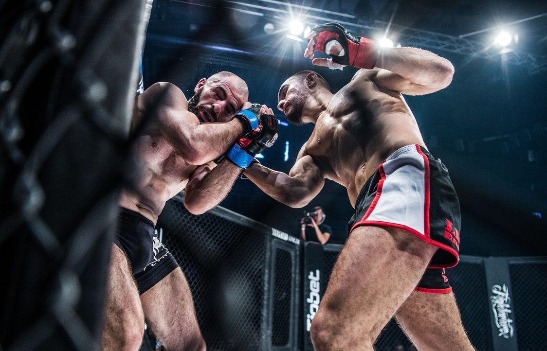 Deutschlands Top-MMA-Organisation kommt zum ersten Mal nach Berlin. ProSiebe... - Bildquelle: ProSieben MAXX/Seven Sport