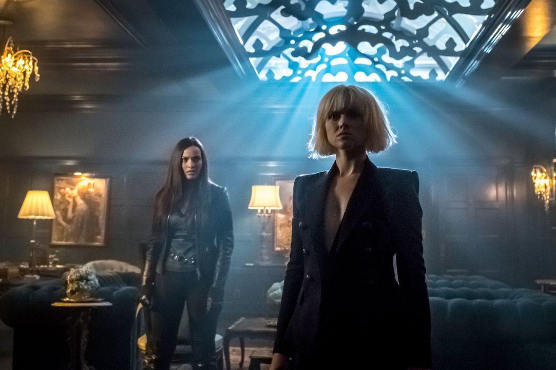 Wie wird Tabitha (Jessica Lucas, l.) reagieren, wenn plötzlich Barbara (Erin Richards, r.) wieder in Gotham auftaucht? - Bildquelle: 2017 Warner Bros.
