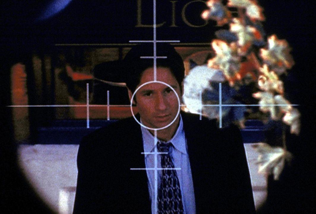 Nachdem Mulder (David Duchovny) ein Komplott der Regierung aufgedeckt hat, befindet er sich schon bald im Fadenkreuz eines Attentäters. - Bildquelle: TM +   Twentieth Century Fox Film Corporation. All Rights Reserved.