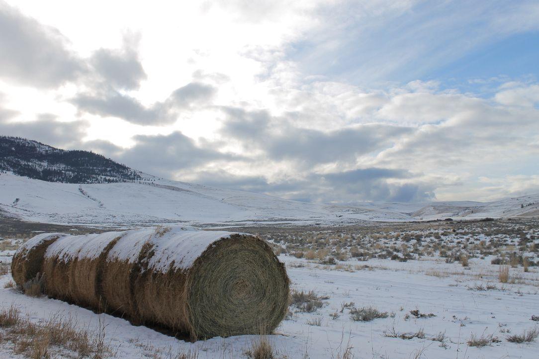 Die nächsten Nachbarn sind weit entfernt, dennoch träumen die Smiths von einem Leben in der Wildnis Montanas. Doch ist das wirklich eine gute Idee? - Bildquelle: 2016,DIY Network/Scripps Networks, LLC. All Rights Reserved