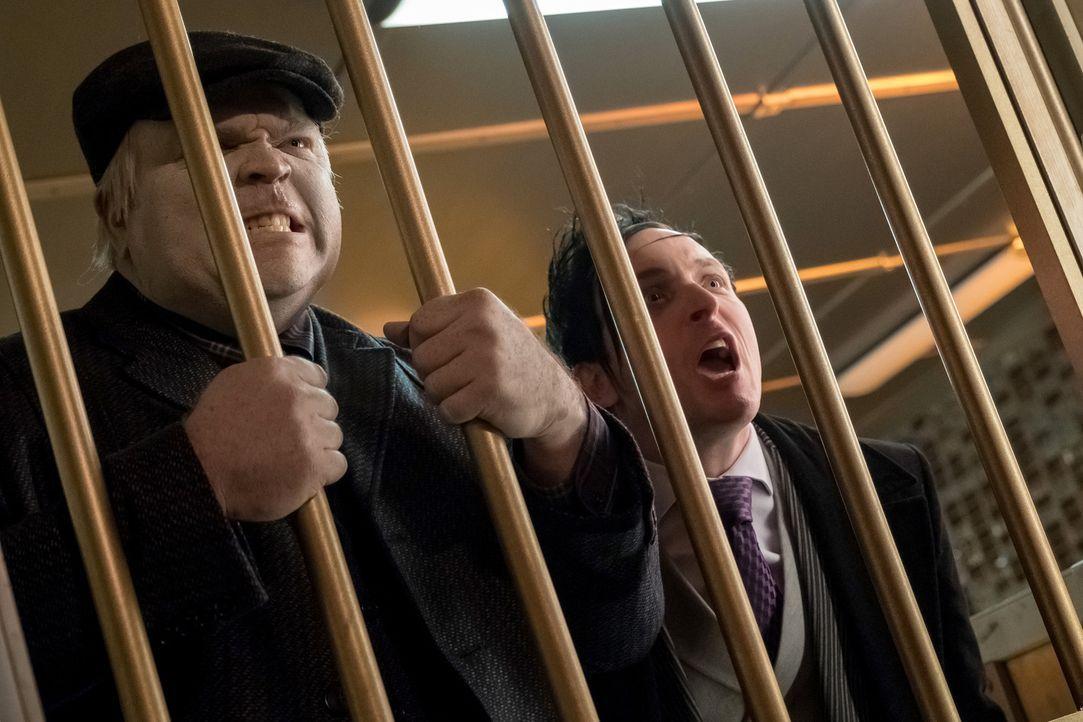 Haben Solomon (Drew Powell, l.) und Oswald (Robin Lord Taylor, r.) etwas mit den Einbrüchen in mehreren Banken zu tun? - Bildquelle: 2017 Warner Bros.