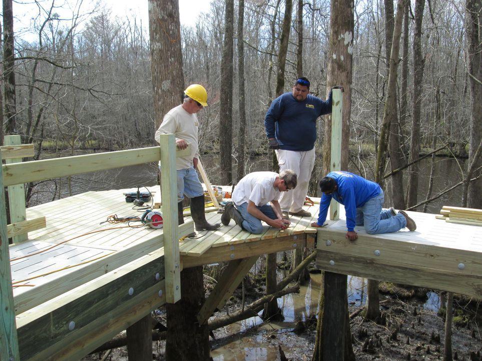 In einem Sumpfgebiet in Windsor, North Carolina klettern die Treehouse Guys mal wieder hoch in die Bäumen, um der Community einen Baumhaus-Traum zu... - Bildquelle: 2016,DIY Network/Scripps Networks, LLC. All Rights Reserved