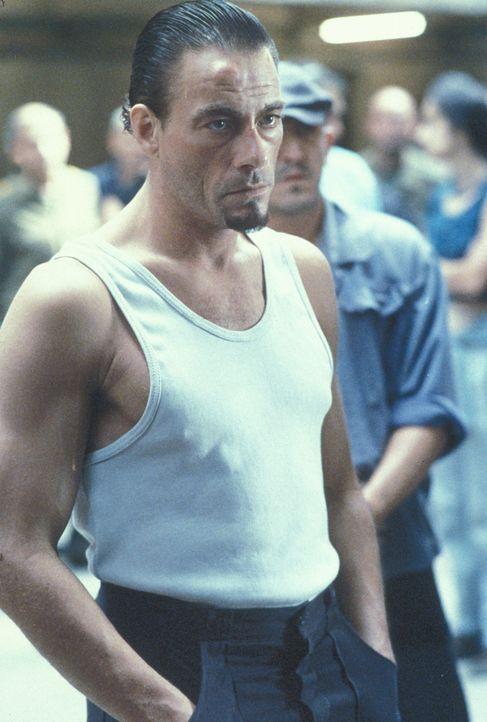 Nach der Ermordung des Mörders seiner Frau wird der amerikanische Ingenieur Kyle LeBlanc (Jean-Claude Van Damme, 4.v.r.) verurteilt und landet in de... - Bildquelle: NU IMAGE
