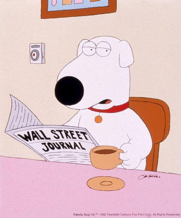 (4. Staffel) - Brian, der Hund: Er ist unbestritten das eloquenteste Mitglied des Griffin-Haushaltes und der einzige, der im täglichen Durcheinander... - Bildquelle: TM +   2005 Twentieth Century Fox Film Corporation. All Rights Reserved.