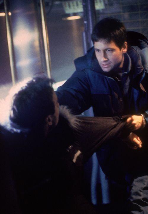 Fox Mulder (David Duchovny, r.) - Bildquelle: 1995 Twentieth Century Fox Film Corporation. All rights reserved.
