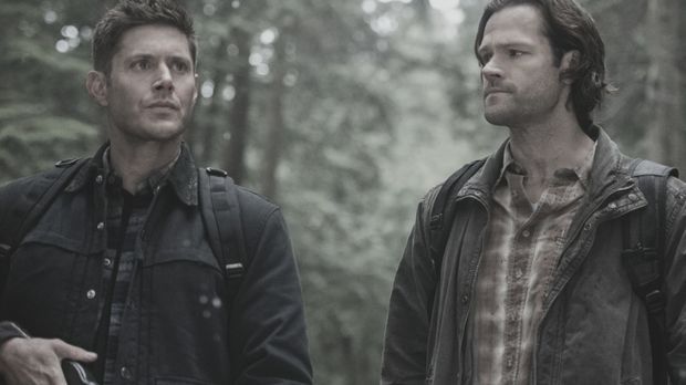 Supernatural Tod