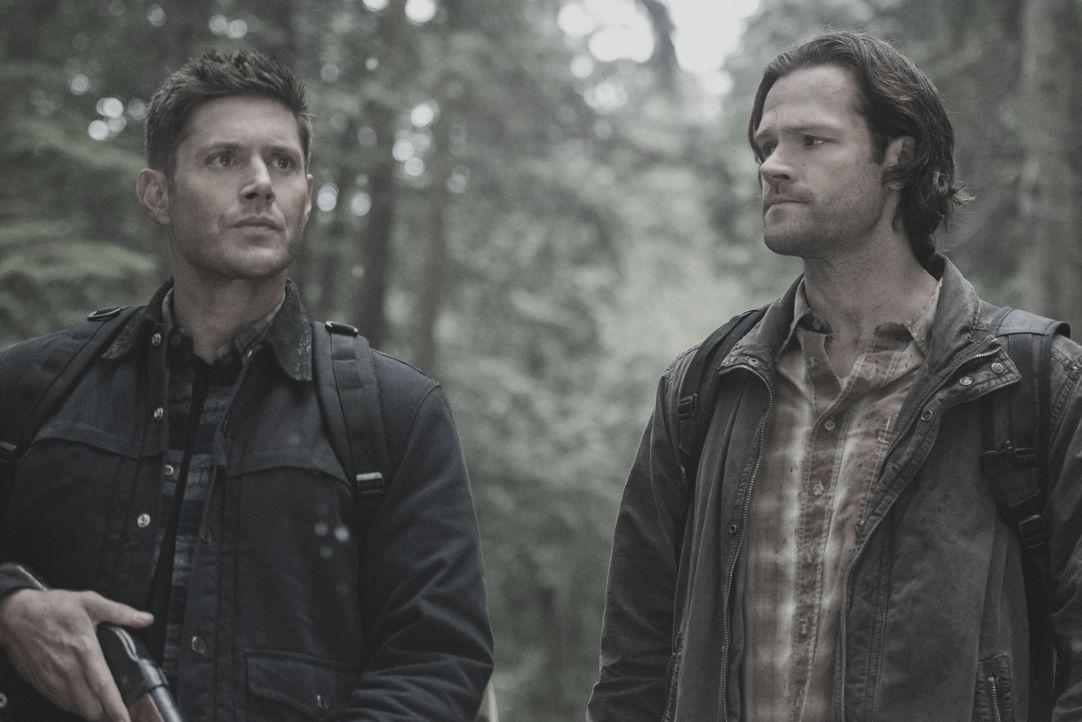 Dean (Jensen Ackles, l.); Sam (Jared Padalecki, r.) - Bildquelle: Dean Buscher 2018 The CW Network, LLC. All Rights Reserved / Dean Buscher