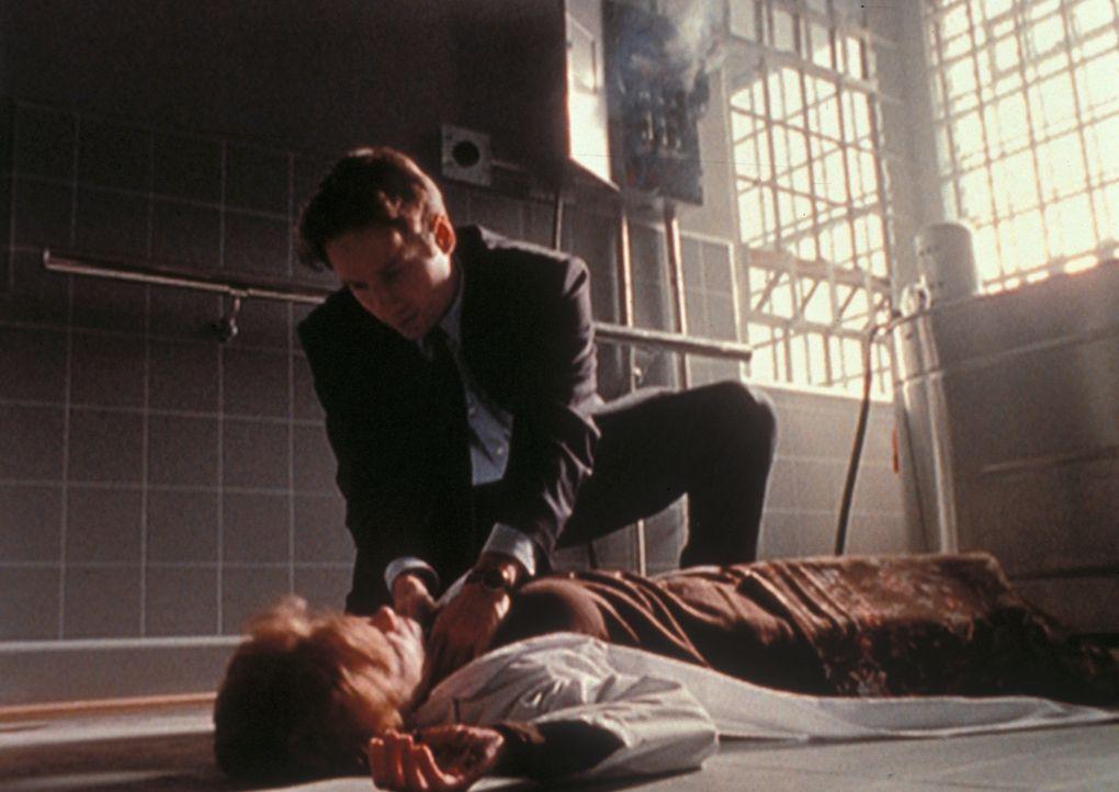 Die Therapeutin (Colleen Winton, liegend) eines mysteriösen Verbrechers hat sich im Gefängniskrankenhaus von Virginia durch einen Stromschlag selbst... - Bildquelle: TM +   2000 Twentieth Century Fox Film Corporation. All Rights Reserved.