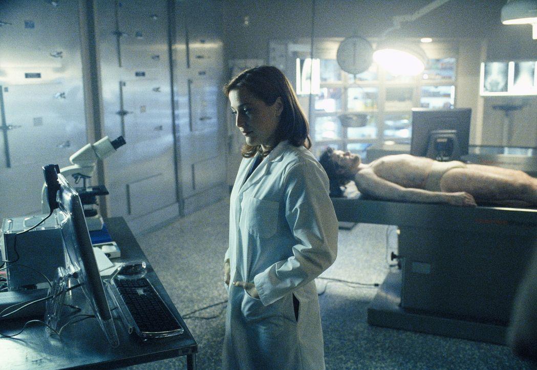 Dana Scully (Gillian Anderson) untersucht die Leiche eines jungen Mannes, der vom Himmel gefallen und auf dem Autodach seines Freundes gelandet ist. - Bildquelle: TM +   Twentieth Century Fox Film Corporation. All Rights Reserved.