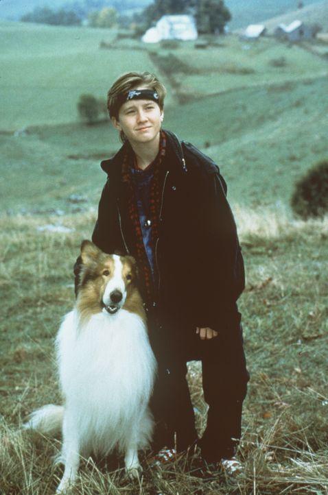 Der einsame Matt (Tom Guiry) findet in der intelligentin Collie-Hündin Lassie eine treue Freundin ... - Bildquelle: Paramount Pictures