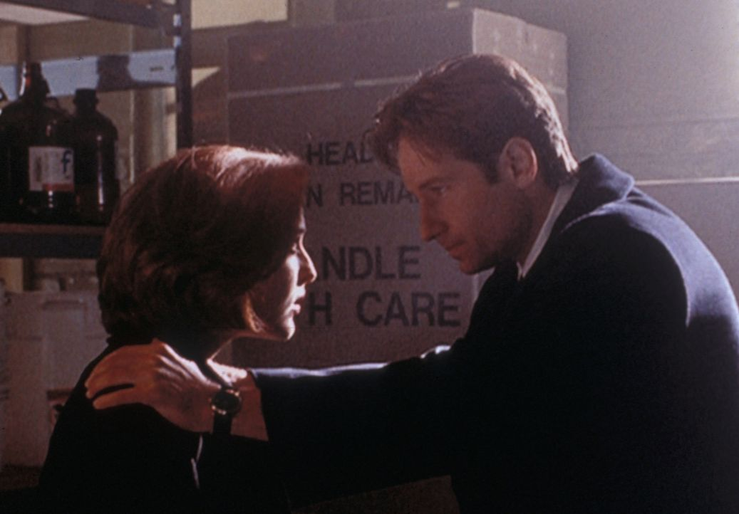 Mulder (David Duchovny, r.) will Scully (Gillian Anderson, l.) davon überzeugen, dass es auch in Texas Vampire gibt. - Bildquelle: TM +   2000 Twentieth Century Fox Film Corporation. All Rights Reserved.