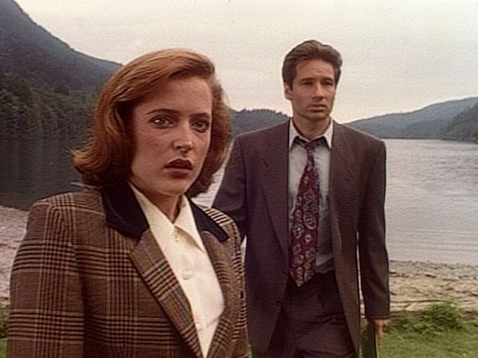 Scully (Gillian Anderson, l.) und Mulder (David Duchovny, r.) begegnen am Lake Okobogee nicht nur Wölfen, sondern sie stoßen auch auf die Spuren von... - Bildquelle: TM +   Twentieth Century Fox Film Corporation. All Rights Reserved.