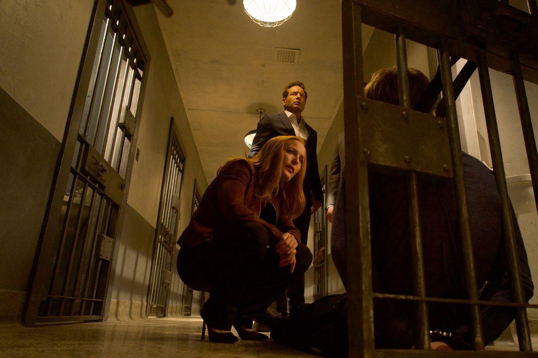 Mulder (David Duchovny, hinten) und Scully (Gillian Anderson, vorne) werden auf eine Reihe von Selbstmorden aufmerksam, bei denen die Opfer vor ihre... - Bildquelle: Shane Harvey 2017 Fox and its related entities. All rights reserved. / Shane Harvey