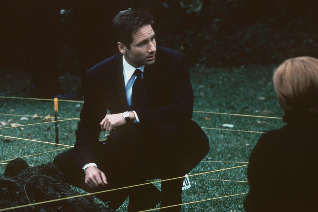 Mulder (David Duchovny, M.) sucht im Garten eines Verdächtigen nach einer vergrabenen Babyleiche. - Bildquelle: TM +   2000 Twentieth Century Fox Film Corporation. All Rights Reserved.