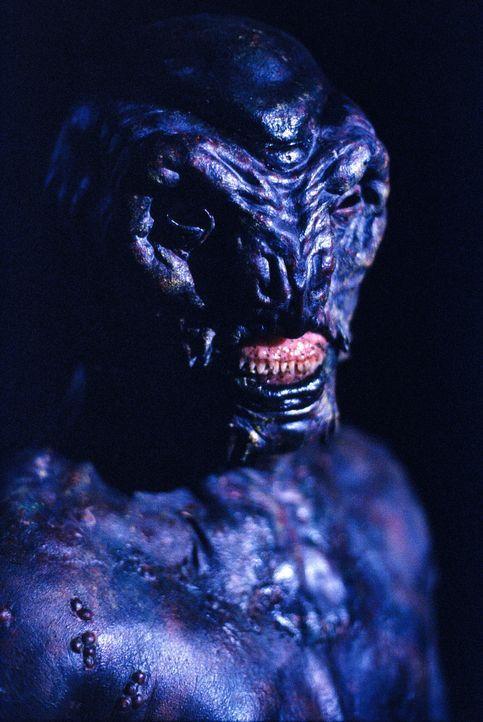 Bei der Verfolgung eines überdimensionalen Salamanders findet Mulder die beiden vermissten Agenten im Haus von Stites und fällt dem Reptil beinahe s... - Bildquelle: TM +   2000 Twentieth Century Fox Film Corporation. All Rights Reserved.