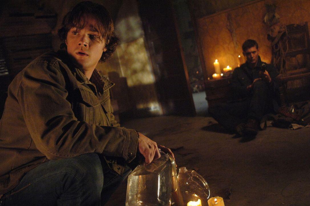 Durch eine verzauberte Hasenpfote geraten Sam (Jared Padalecki, l.) und Dean (Jensen Ackles, r.) in eine äußerst lebensgefährliche Situation ... - Bildquelle: Warner Bros. Television