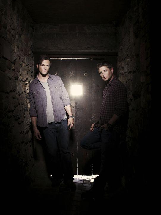 (5. Staffel) - Sie begeben sich auf eine gefährliche Jagd nach dem Übernatürlichen: Sam (Jared Padalecki, l.) und Dean Winchester (Jensen Ackles, r.... - Bildquelle: Warner Bros. Television