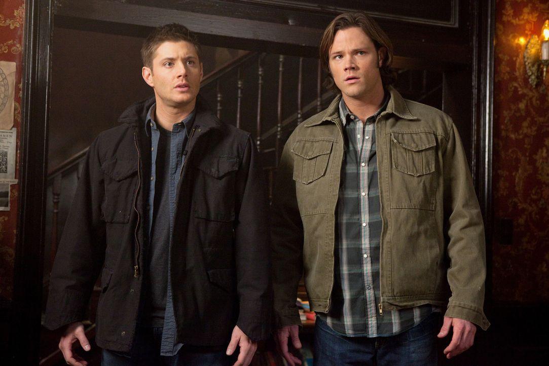 Tote tragen keine Karos: Dean (Jensen Ackles, l.) und Sam (Jared Padalecki, r.) ... - Bildquelle: Warner Brothers