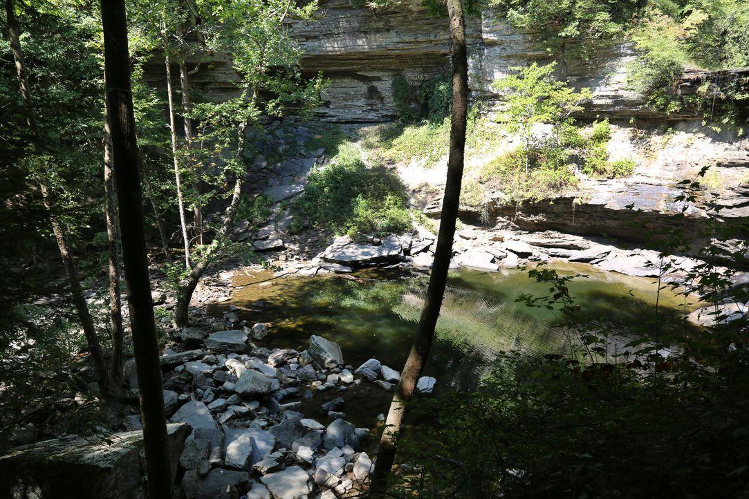 """In der grünen Natur versteckt: die """"Greeter Falls"""" in Tennessee, USA. - Bildquelle: 2017,The Travel Channel, L.L.C. All Rights Reserved"""