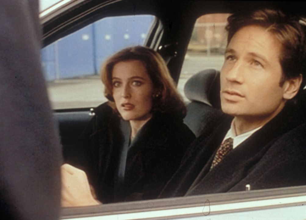 Mulder (David Duchovny, r.) und Scully (Gillian Anderson, l.) sind nach San Diego gereist, um ein französisches Bergungsschiff zu inspizieren, desse... - Bildquelle: TM +   2000 Twentieth Century Fox Film Corporation. All Rights Reserved.