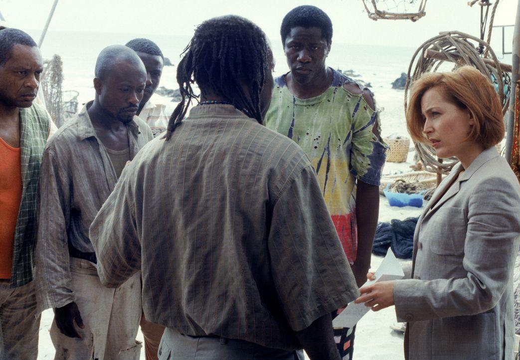Während Scully (Gillian Anderson, r.) bei den Ermittlungen davon überzeugt ist, dass die Artefakte Fälschungen sind, beginnt Mulder plötzlich, Stimm... - Bildquelle: 1998-1999 Twentieth Century Fox Film Corporation.  All rights reserved.