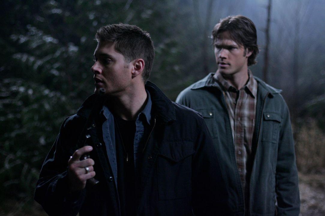 Wissen, dass der Kampf gegen das Böse noch lange kein Ende hat: Dean (Jensen Ackles, l.) und Sam (Jared Padalecki, r.) ... - Bildquelle: Warner Bros. Television
