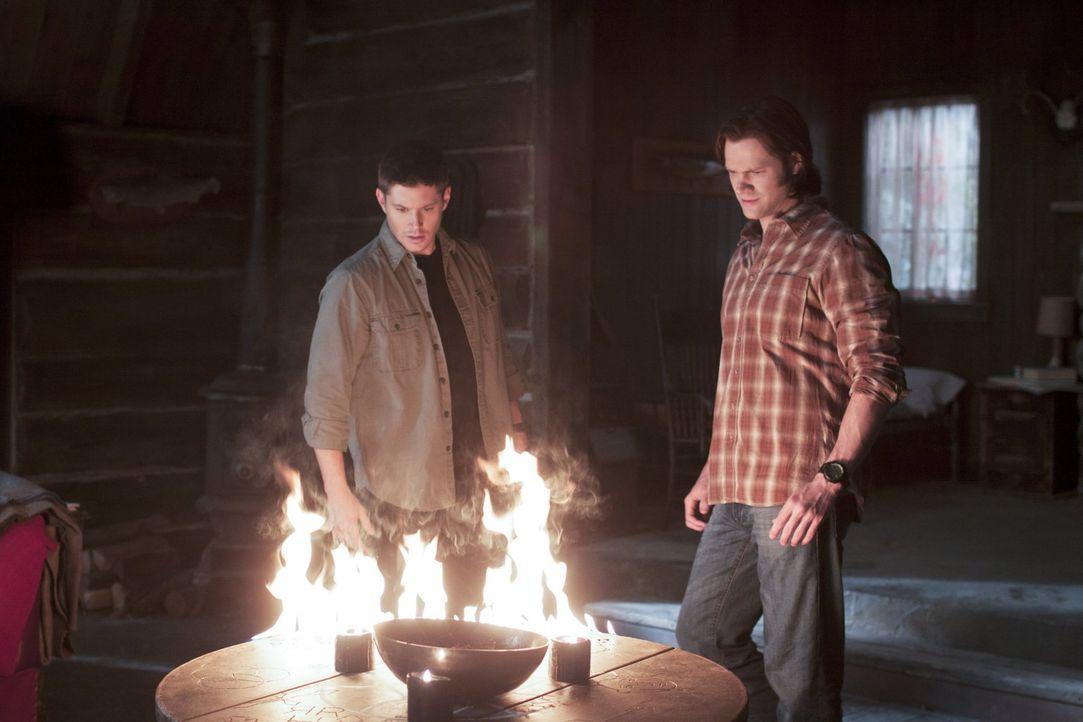 Irgendwie müssen Sam (Jared Padalecki, r.) und Dean (Jensen Ackles, l.) es schaffen, den Verbrecher zu finden, der allen Menschen bestimmte Nährstof... - Bildquelle: Warner Bros. Television