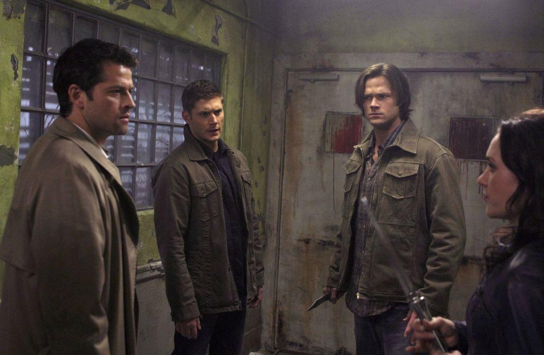 Nur gemeinsam können Castiel (Misha Collins, l.), Dean (Jensen Ackles, 2.v.l.), Sam (Jared Padalecki, 2.v.r.) und die Dämonin Meg (Rachel Miner, r.)... - Bildquelle: Warner Bros. Television