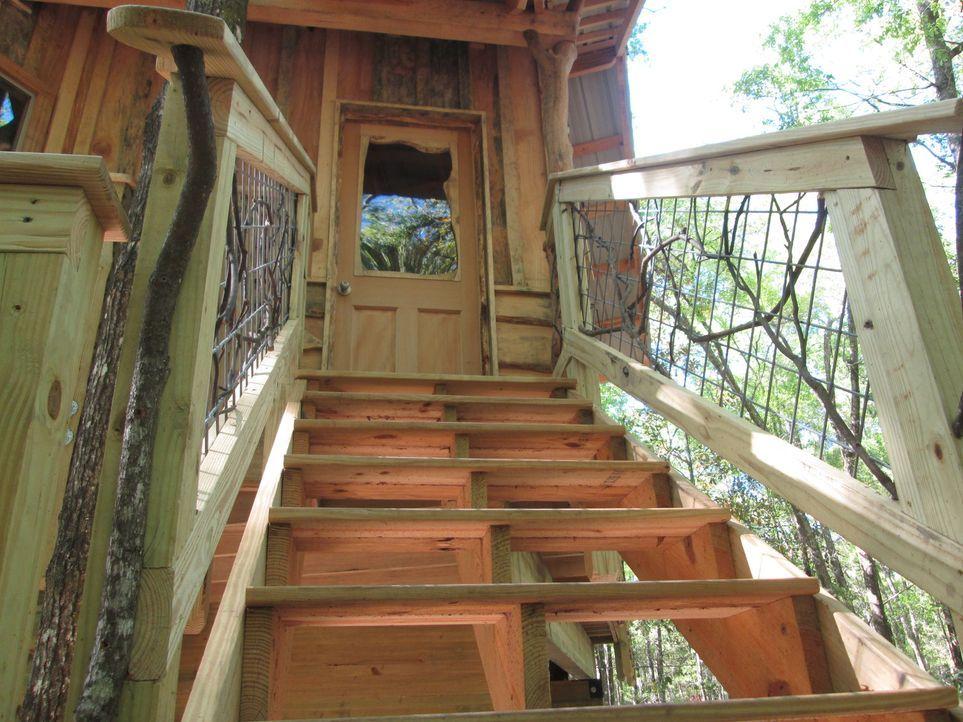 Dieses Mal nehmen es die Treehouse Guys mit den Bäumen im Norden Floridas auf. Für Sara, Jamie und deren Söhne kreieren sie einen Baumhaustraum von... - Bildquelle: 2016,DIY Network/Scripps Networks, LLC. All Rights Reserved.