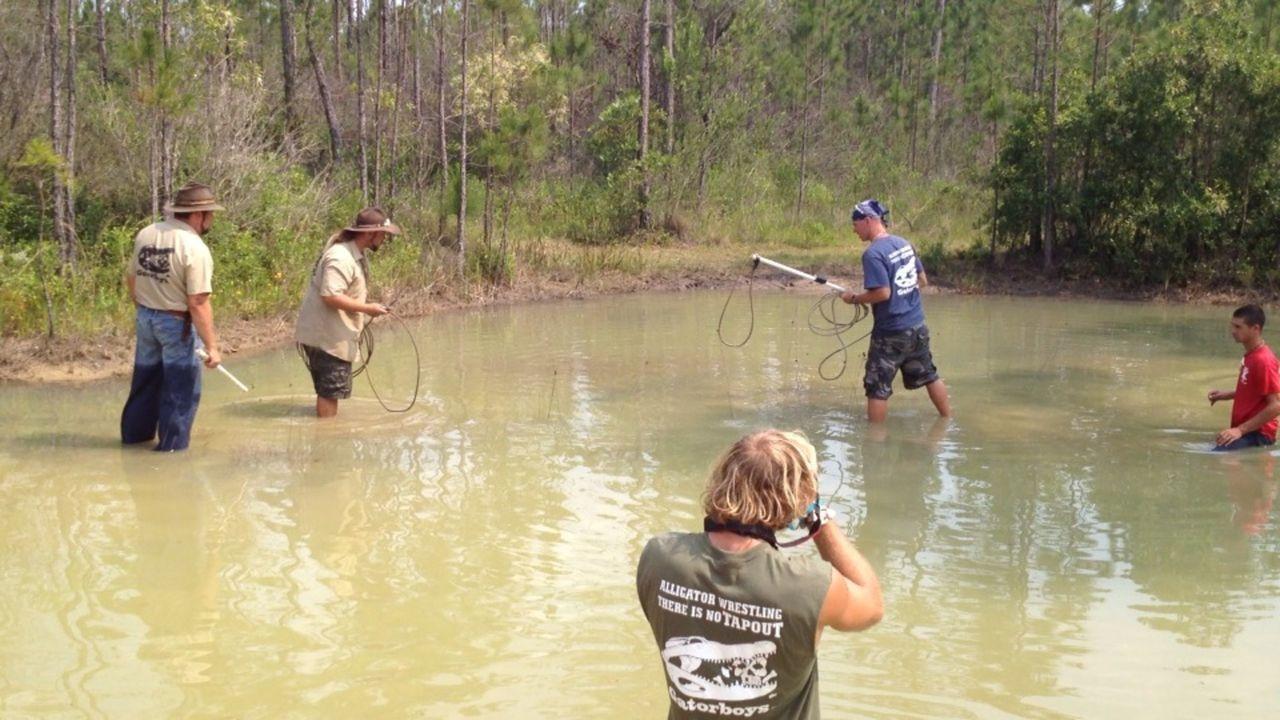(2. Staffel) - Sie haben keine Angst vor Krokodilen: Die Gator Boys Paul Bedard (2.v.r.) und Jimmy Riffle (2.v.l.) ... - Bildquelle: 2011 Discovery Communications
